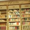 Leggo quindi sono, grande successo per la festa per la biblioteca Cassar